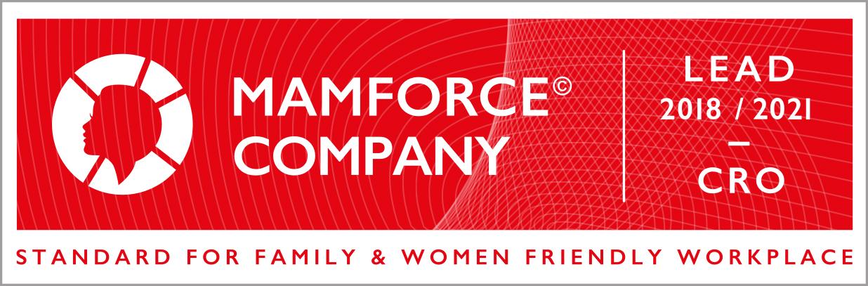 Poslovna inteligencija - Mamforce lead certifikat