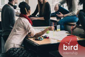 BIRD internship poslovna inteligencija